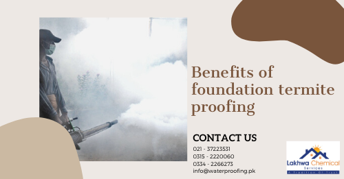 Foundation Termite Proofing in Karachi | pest control karachi | perfect pest control services karachi | fumigation services in karachi gulistan e jauhar | lakhwa chemical services