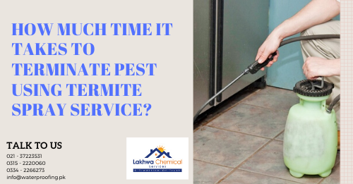 termite spray in Karachi | fumigation services in clifton karachi | perfect pest control services karachi | fumigation services in karachi gulistan-e-jauhar | termite proofing | lakhwa chemical services